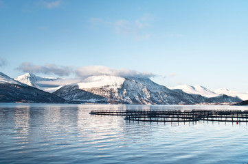 Salmon farms in Norway