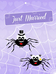 Wedding of spiders