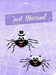 Wedding of spiders