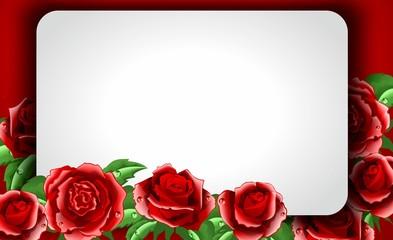 Красные розы с полем для текста