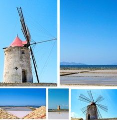 The Salt of Sicily - Trapani coast