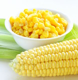 Canned corn in a bowl and fresh cobs