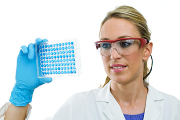 young woman examining microplate