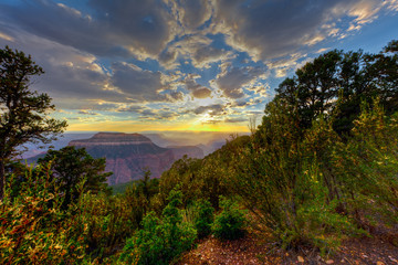 AZ-Grand Canyon National Park-North Rim-Timp Point