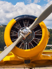 Vintage Yellow Propeller Aircraft Parked at an Airport