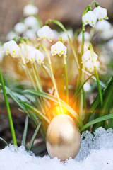 Easter eggs snowflake outdoors
