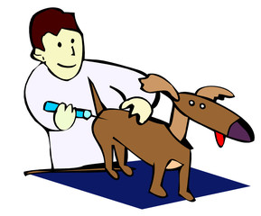 veterinary drawing