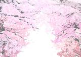 桜のトンネル - 60785111