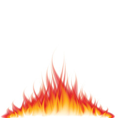 Burning fire on white vector illustration