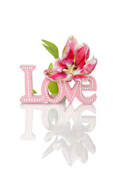 """Love"" word and tulips"