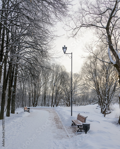 winter promenade for walking with a bench and a lantern