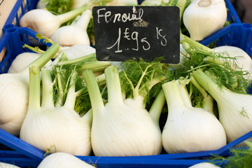 Fennel for sale