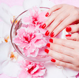 manicure and pedicure, body care, spa treatments