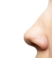 nose on a white background. macro