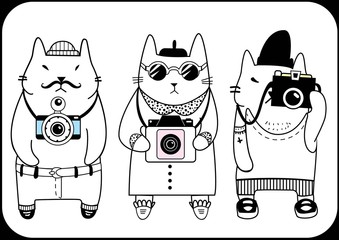 cute hipster cats