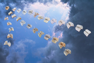 flying books in evening sky