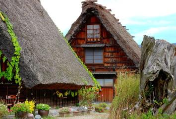 Rustic houses - Shirakawa-go
