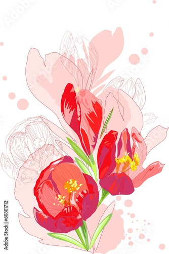 Sketch of a spring flowers red colors