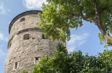 Medieval tower in Tallin