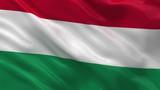 Flag of Hungary waving in the wind - seamless loop