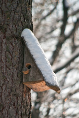 Bird house. Booth breeding on tree