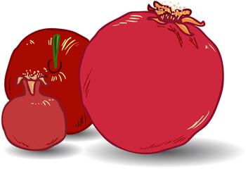 Pomegranates for Rosh Hashanah 1