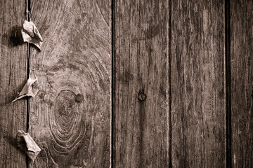 wooden texture with natural patterns and vine