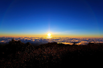 Sunrise over the sea of cloud