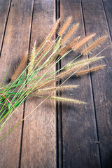 grass on old wooden