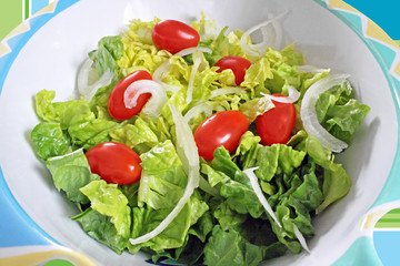 Fresh garden salad of romaine, onions and cherry tomatoes