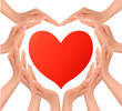 Heart of hands holding a red heart. Vector.