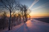 Fototapety Sunrise in winter