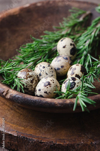 Fresh quail egg in bowl