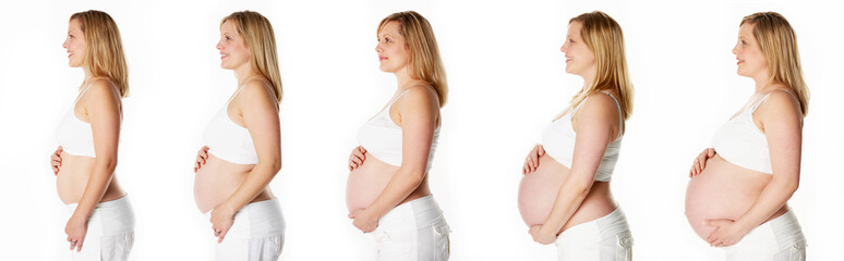 Studio Sequence Showing Progression Of Human Pregnancy