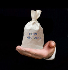 Bag with home insurance