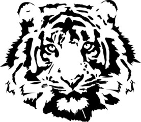 tiger head in black interpretation