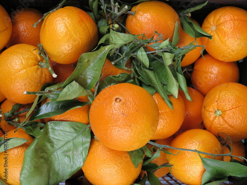 Fresh oranges on the market
