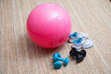 Swiss ball fitness