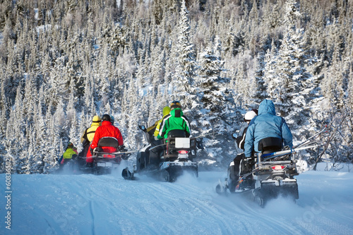 snowmobiling in forest