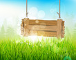Spring morning - background with empty wooden sign