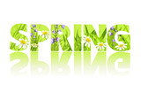 Fototapety spring, grass, letters