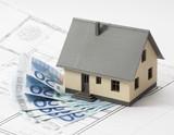 spending euros for extending or renovating a house poster