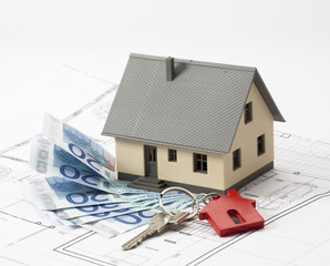 spending money to acquire a house with personalised blueprint