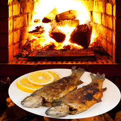 fried river trout fish on plate and fire in oven