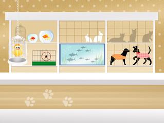 illustration of pet shop
