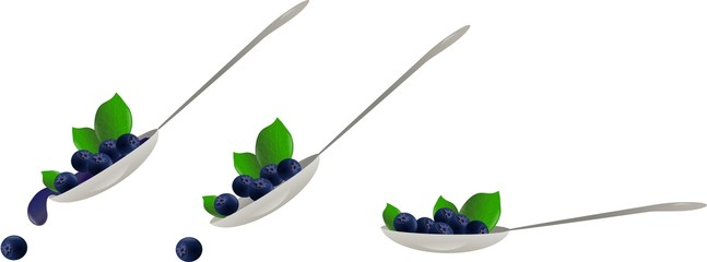 Blueberry spoon
