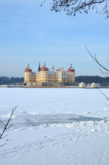 Winter in Moritzburg