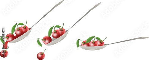 Cherry spoon