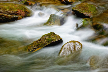 rocks in the river bed