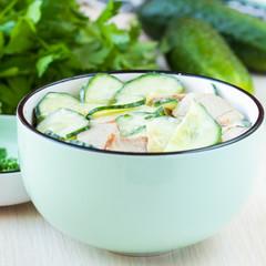 Fresh salad with cucumber, pork meat, sour cream, yogurt, health
